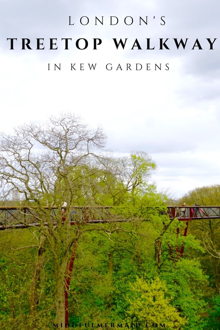 Treetop walkway in London