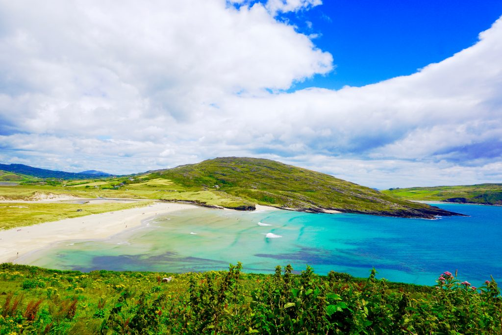 Turquoise water and sandy beach surrounded by a lush, green landscape in Barleycove Beach in West Cork, Ireland. Barleycove Beach is along the Wild Atlantic Way in Ireland.