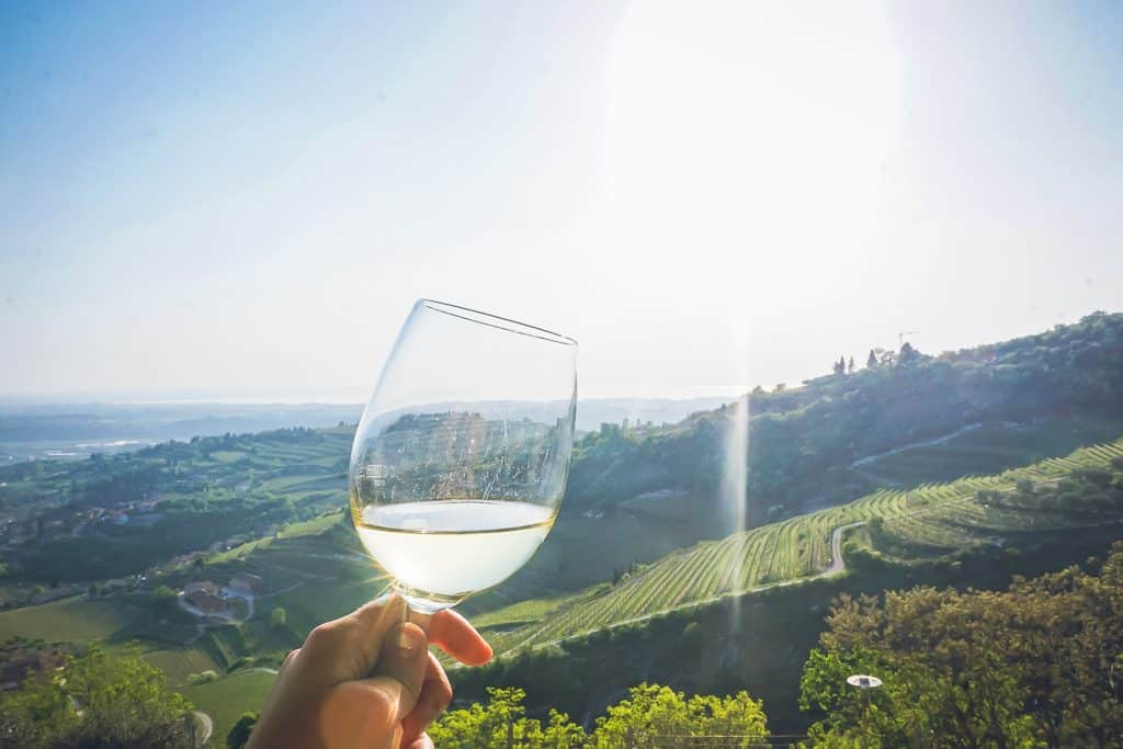 Wine tour and tasting in Valpolicella area of Italy, featuring La Grola hill.