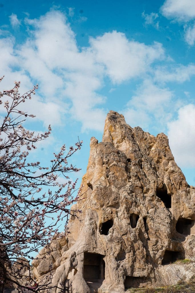"Cherry blossoms framing a ""fairy chimney"" rock formation in the Open Air Museum in Cappadocia, Turkey."