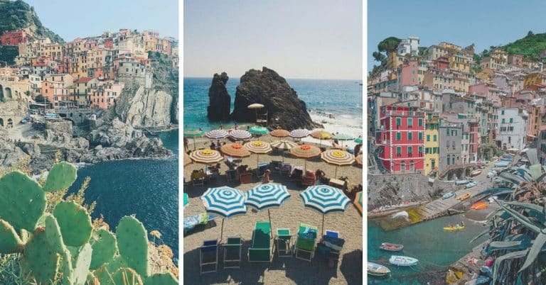 cinque terre train travel, through the small fishing villages of Italy. Coastal landscape with colorful houses and succulent plants.