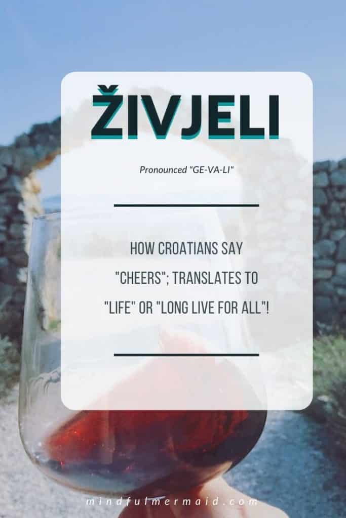 Zivjeli definition; Croatian slang
